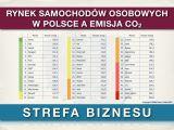 Emisja CO2 w Polsce - mogłoby być lepiej. Liderzy polskiego rynku